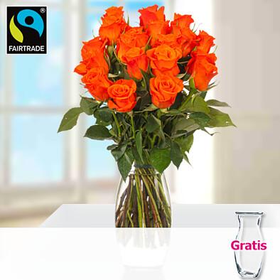 Orange Fairtrade Rosen im Bund mit Vase