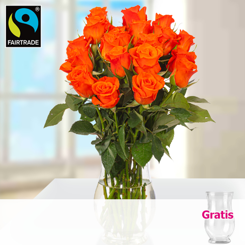 Orange Fairtrade Rosen im Bund mit Vase