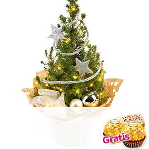 Weihnachtsbaum Stern-<br>schnuppe
