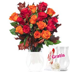15 rote und orange <br>Rosen