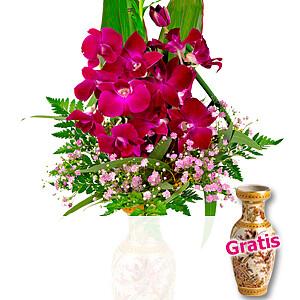 Asiatische <br>Orchideen
