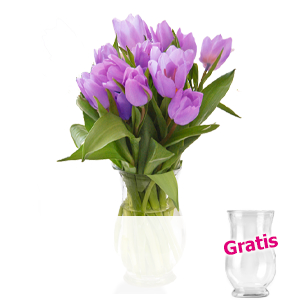 20 lila Tulpen <br>im Bund