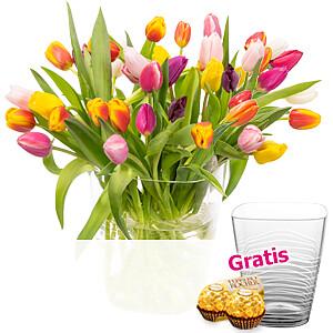 40 Tulpen <br>im Bund