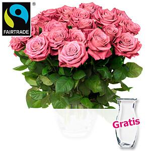 20 rosa Rosen <br>im Bund