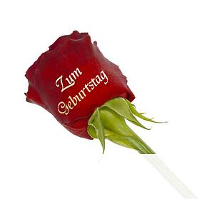 """Edelrose """"Zum <br>Geburtstag"""""""