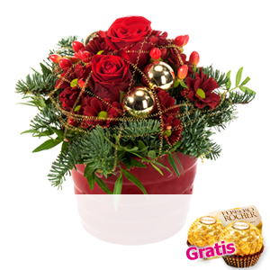 Roter Weihnachts-<br>traum