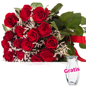 15 rote Rosen mit <br>Limonium