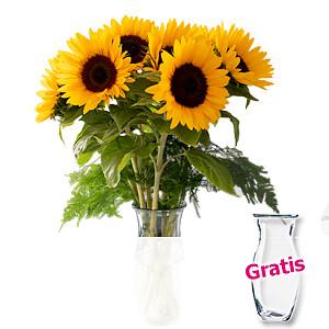 7 Sonnenblumen <br>im Bund